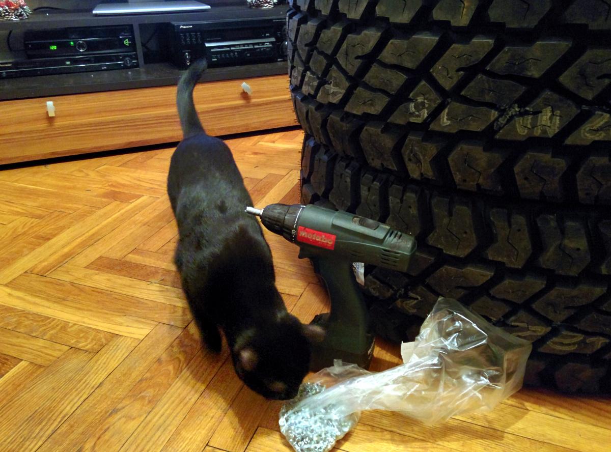 И с помощью кота